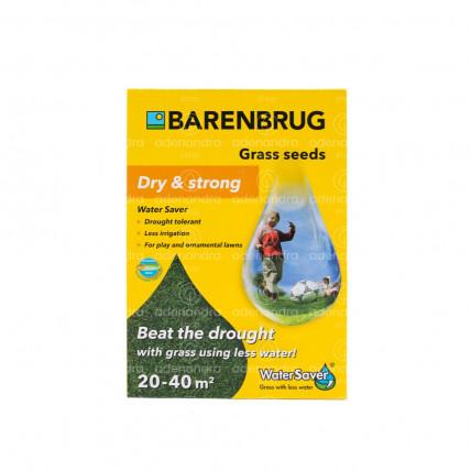 Barenbrug Seminte Gazon, Dry & Strong Water Saver, 1 Kg